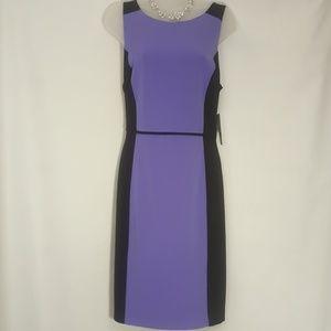 Ladies Purple & Black Liz Claiborne size 12 Dress